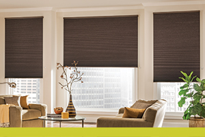 for motorized bali great review ideas reviews shades blinds window room hunter roman creative living treatment cordless